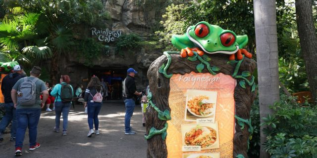 Rainforest Cafe (Disney's Animal Kingdom)