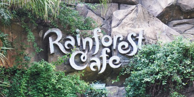 Rainforest Cafe (Dubai, UAE)
