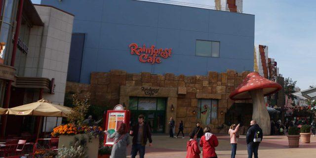 Rainforest Cafe (Disney Village)
